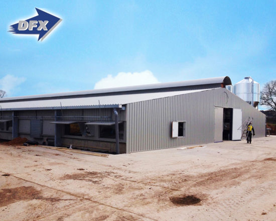 Prefab Design Construction Low Cost Steel Structure Poultry Shed In India
