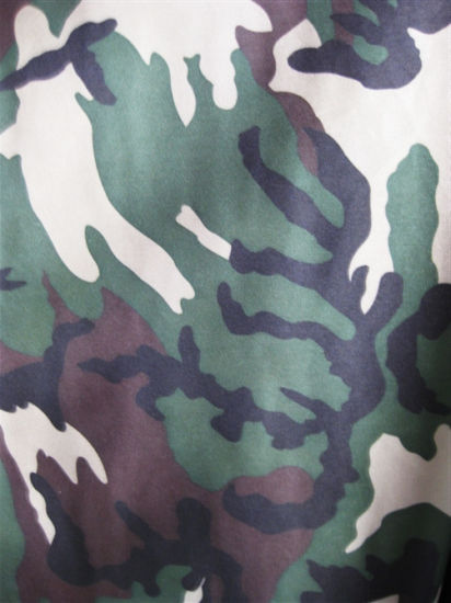 High Quality 600d Oxford Camouflage Printing Polyester Fabric pictures & photos