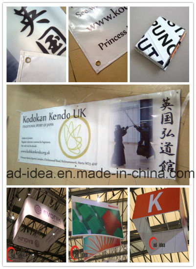 Outdoor/Wall Vinyl/PVC Banner/Flex/Flag/Hanging Banner Printing for Advertising pictures & photos