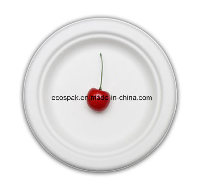 "Eco-Friendly Biodegradable 100% Compostable Paper Tableware Bagasse 6"" Dinner Plate"