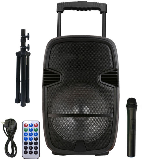12inch Trolley Karaoke Active Professional Bluetooth Speaker pictures & photos