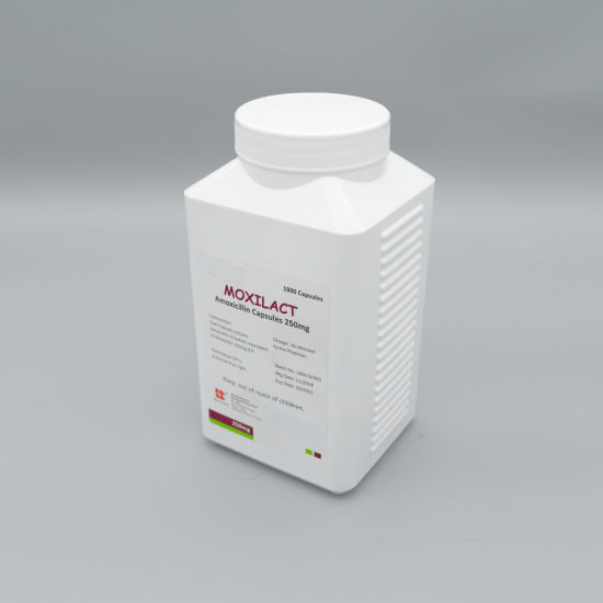 GMP, ISO9001and ISO14001 Amoxicillin Capsules 250 Mg of High Quality