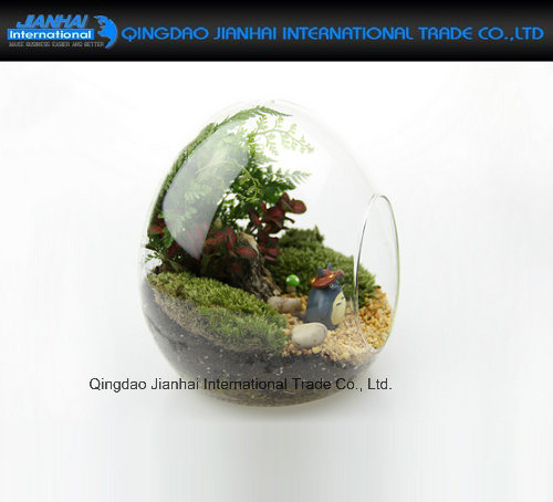 Fairy Garden Decor Egg Shaped Clear Glass Vase Terrariums pictures & photos