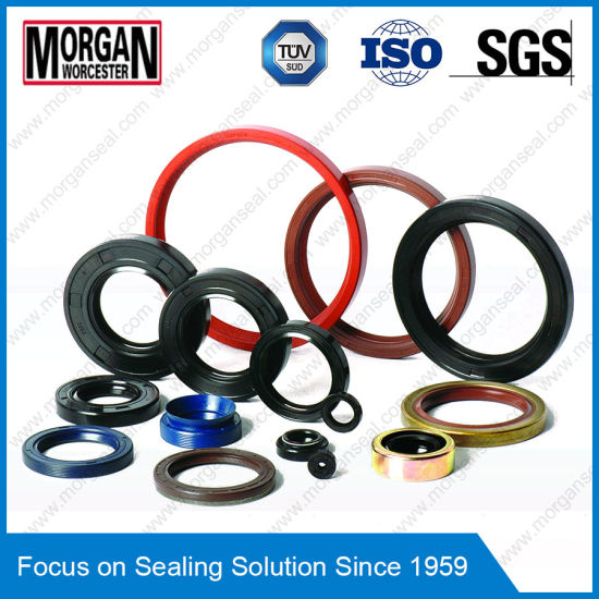 High Quality Hydraulic Seal/O Ring/V Ring/Oil Rubber Seal pictures & photos
