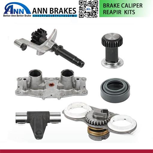 China Meritor Elsa2 Series Brake Caliper Bearing Kit Axial