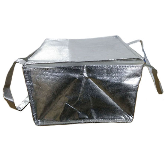 Hot Ing Thermal Insulated Disposable Aluminium Foil Cooler Bag