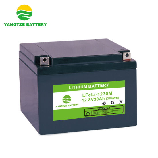12V 30ah LiFePO4 Lithium Battery Pack with BMS and Protection Board