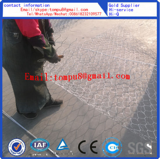 Welded Wire Gabion Mesh and Hexagonal Gabion Mesh /Hot Sale pictures & photos