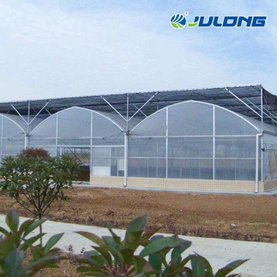Agricultural Large Size Polytunnel Steel Structure Nft Hydroponic System Greenhouse