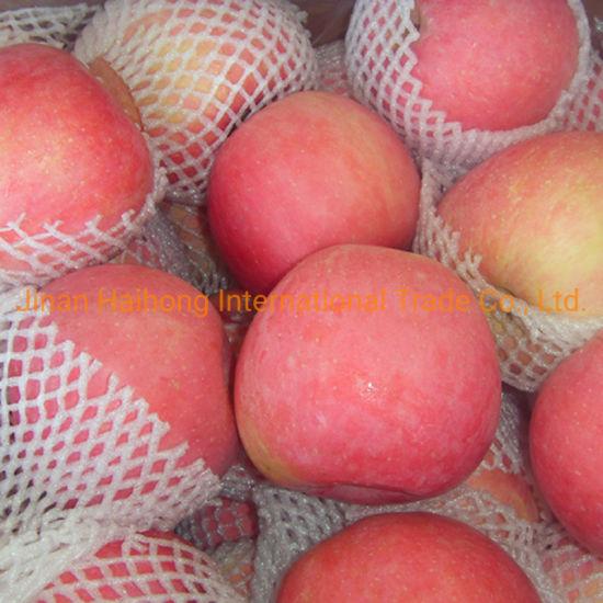 2019 Fresh Fruits FUJI Apple Fresh Red Apple From China