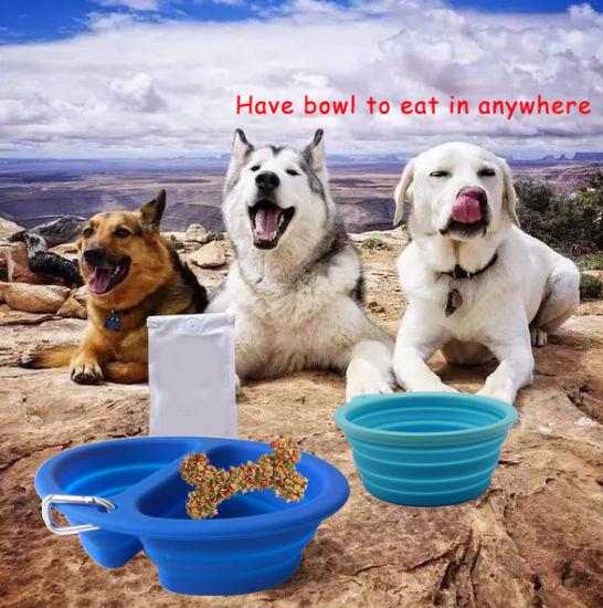 New Amazon Silicone Foldable Food & Water Double Hole Dog Feeder Bowl