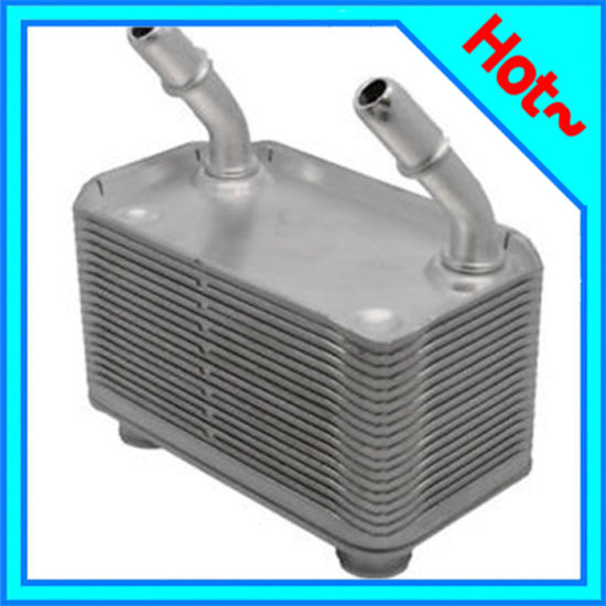 Engine Oil Cooler for BMW X5 (E53) 00-06 17101439112 pictures & photos