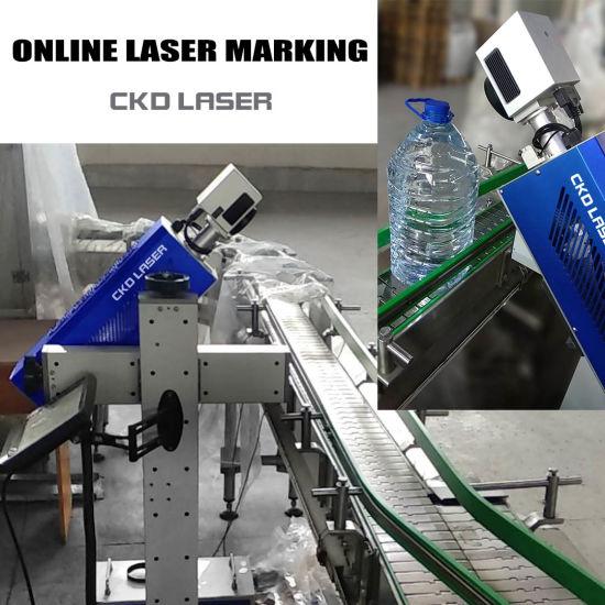 PP PE Plastic Bottle Pipeline CO2 Laser Marking Machine for Produce Date Logo