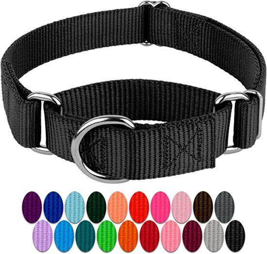 Black Martingale Heavy Duty Nylon Dog Collar