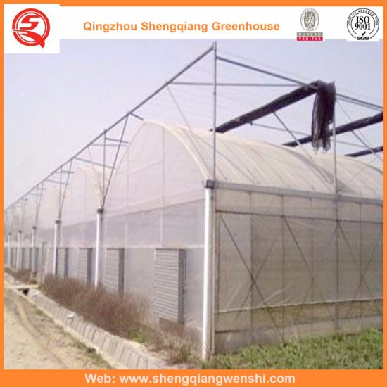 Agriculture/Commercial/Garden Plastic Greenhouses with Cooling System