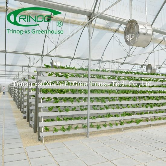 Indoor greenhouse lettuce vertical Hydroponics System for large farm