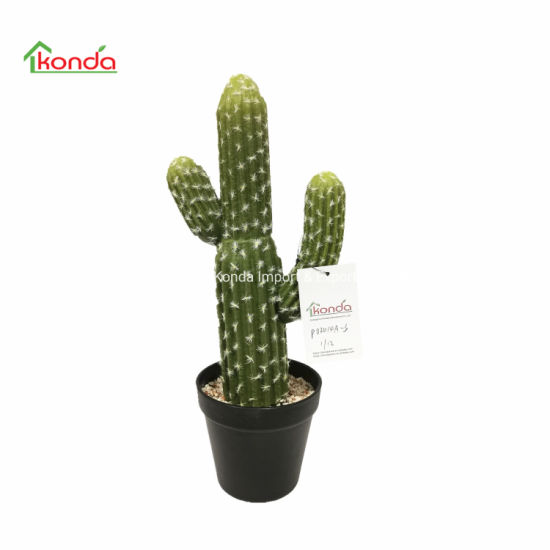 Home Decoration Real Touch Green Plants Potted Simulation Succulents Artificial Cactus