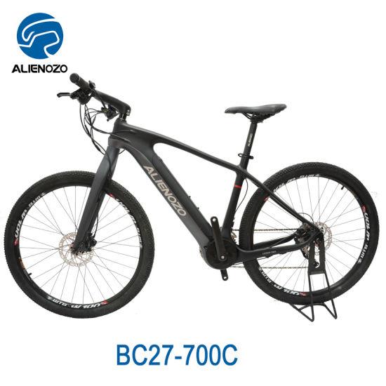 China 28 Electric Cycle Motors Bike Equipment Electric Lowrider