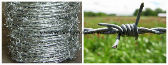 Hot Sale 2mm *2mm Galvanized Barbed Wire for Farm