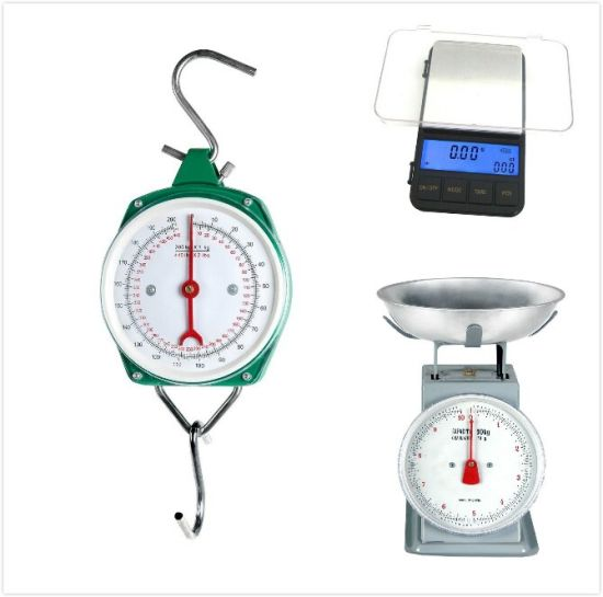 100kg Spring Balance Measuring Hanging Weighing Scale pictures & photos