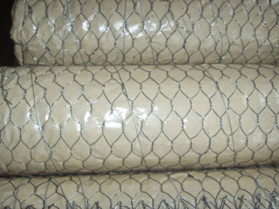 Galvanized/PVC Hexagonal Wire Mesh Factory pictures & photos