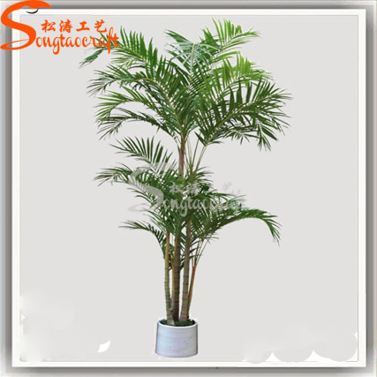 China Home Decoration Artificial Bonsai Plant Palm Tree ... on flowers and names, weeds and names, wildflowers and names, protists and names, clothing and names, cell functions and names, orchids and names, pets and names, tools and names, fern leaves and names, stones and names, nuts and names, food and names, bacteria and names, elements and names, minerals and names, crystals and names, birds and names, cards and names, dogs and names,
