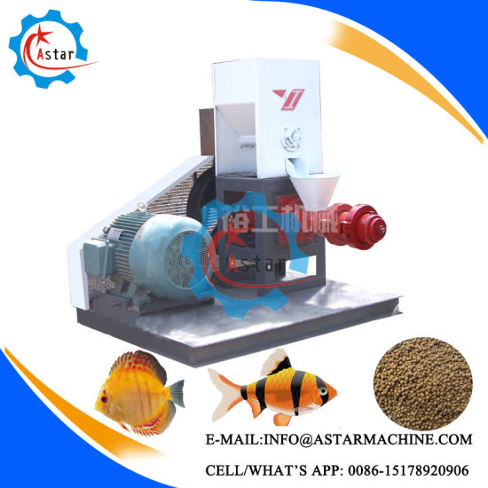 Export to Bangladesh Fish Food Production Equipment