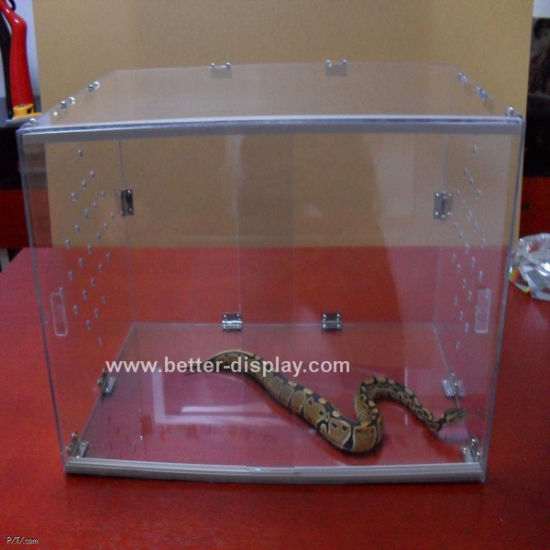 Clear Acrylic Reptiles Feeding Box Btr-S1016