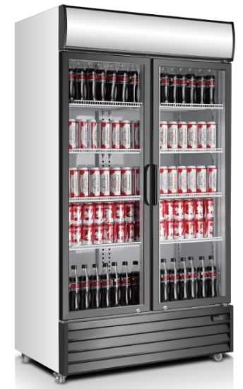 1000L Display Freezer, Hight Quality Upright Display Freezer pictures & photos