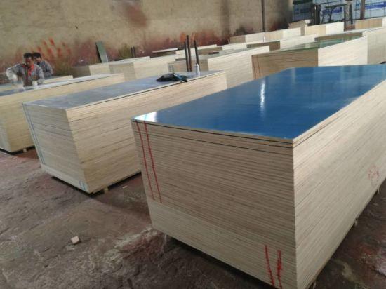 China Blue Film Plastic Plywood Sheet/Plastic Coated Plywood