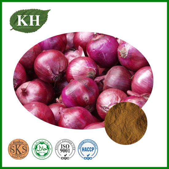 Onion Extract Quercetin 10%, 40%, Polyphenol 30%