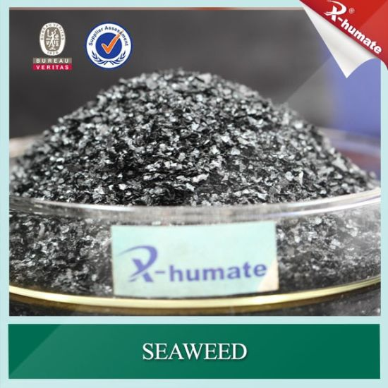 100% Water Soluble Seaweed Extract for Irrigation Fertilizer pictures & photos