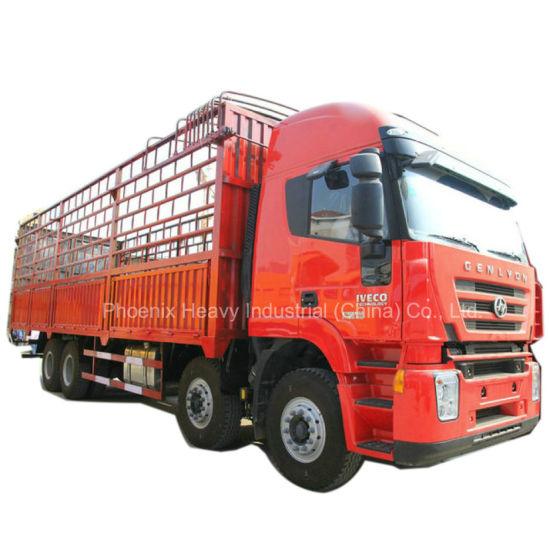 C100 Hongyan 8X4 Cargo Heavy Truck with Euro4 Engine
