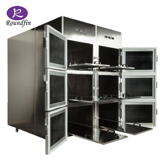 6 Corpses Dead Body Freezer Cadaver Cold Storage Mortuary Morgue Refrigerator