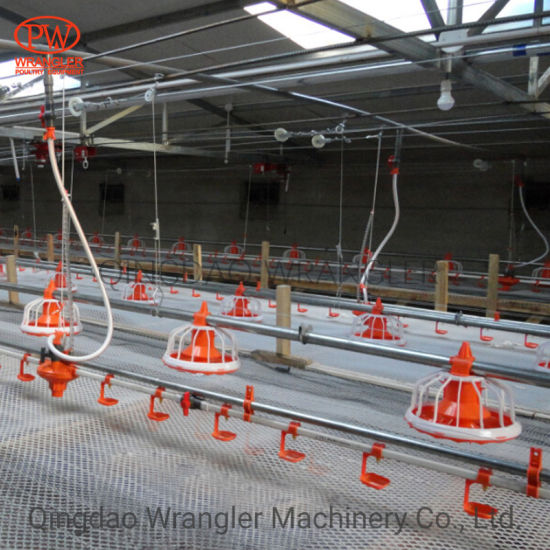Poultry Farming Automatic Chicken Drinking and Feeding Line System