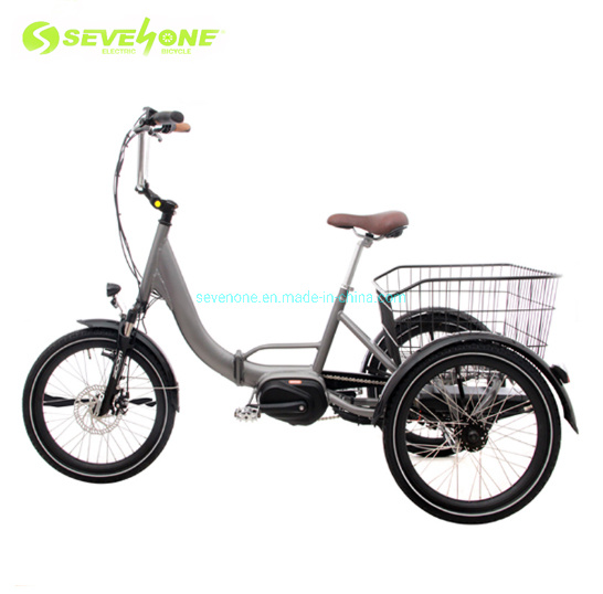 Family Used Electric Tricycle for Cargo Aluminum Foldable Frame