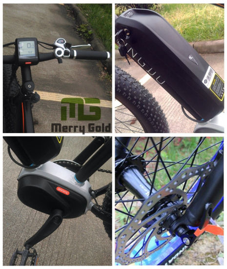 Hot Selling OEM Electric Bicycle with MID Drive for Wholesale pictures & photos