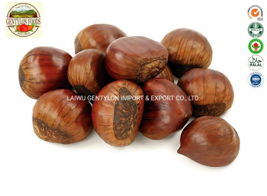Chinese 2019 New Crop Chestnut Price Per Kg Mesh Bag Chestnuts pictures & photos
