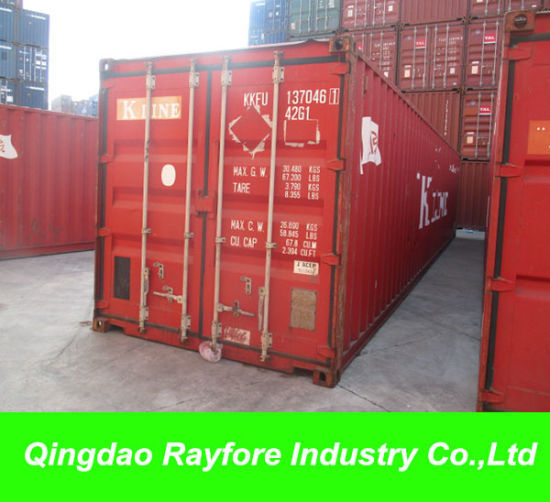 Brazil/ Mexico/ USA/Canada Storage 40FT 40hc Container (RAY STO-039)