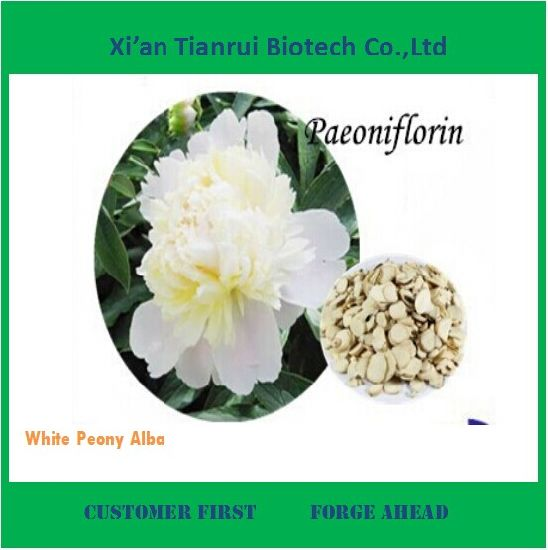 Best Price White Peony Alba Plant Extract for Sale pictures & photos
