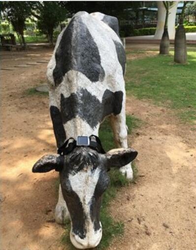 China Newest Waterproof IP66 Mini Solar Sheep Cow Animal GPS