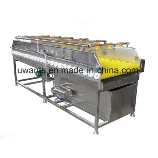 High Efficiency Brush Washing Machine for Fruit pictures & photos