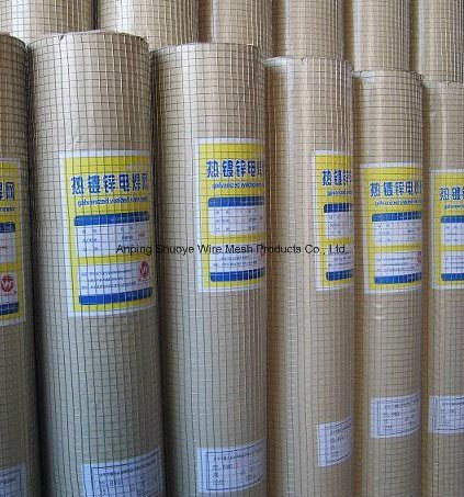 Welded Wire Mesh for Cage/Filter pictures & photos