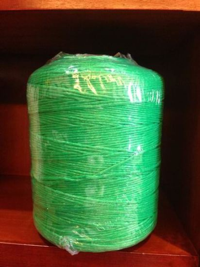500m/Kg Raw White/Black/Red/Blue and So on Color PP Packing Twine pictures & photos