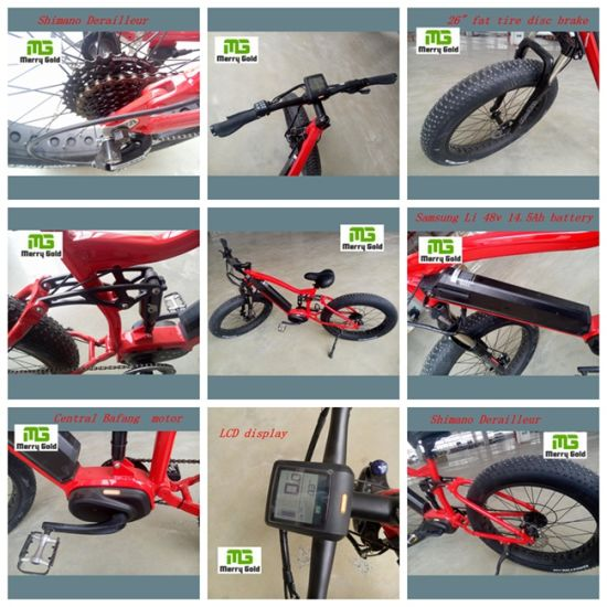 Full Suspension Lithium Battery Electric Bike pictures & photos