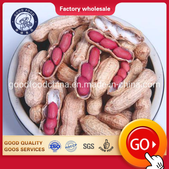 Edible High-Grade Long-Shell Raw Peanuts pictures & photos