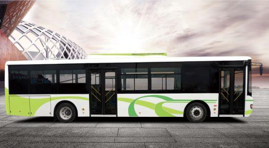 Pure Electric Luxury Passenger 12 Meters City Bus Hot Sale
