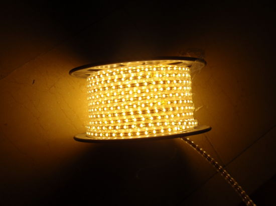220V/127V Flexible LED Rope (HVSMD2835-120) pictures & photos