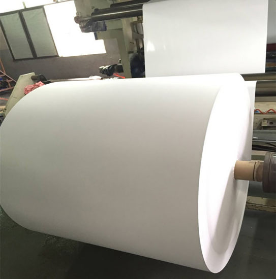 Single Side PE Coated Paper for  French Fries Packaging pictures & photos