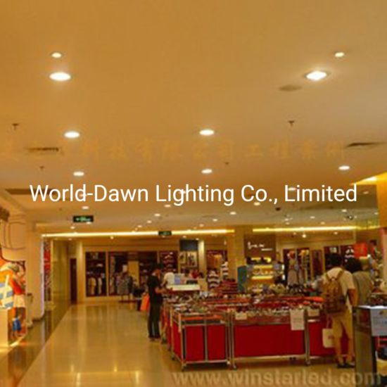 4W/6W Waterproof IP65 SMD2835 PBT+PC Cover 1 Year Warranty Hotel Exhibition Hall Indoor Outdoor LED Downlight Light